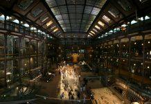 Parisul are unul dintre cele mai frumoase muzee de istorie naturala din Europa FOTO: Roï Boshi /Wikimedia Commons