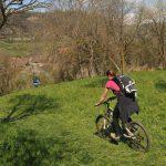 trasee-de-bicicleta-colinele-transilvaniei-podisul-hartibaciului-03