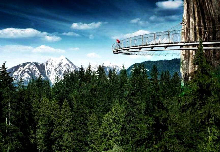 Imagine din proiectul de construcție peste Cascada Tamina FOTO: Adevarul.ro