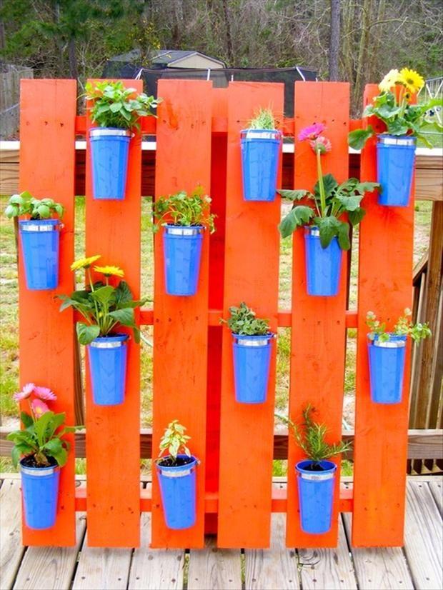 FOTO: vitamin-ha.com