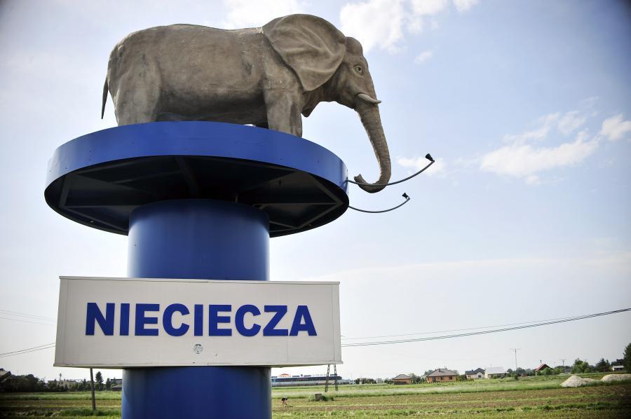 Termalica Bruk-Bet Nieciecza (sport.dziennik.pl)