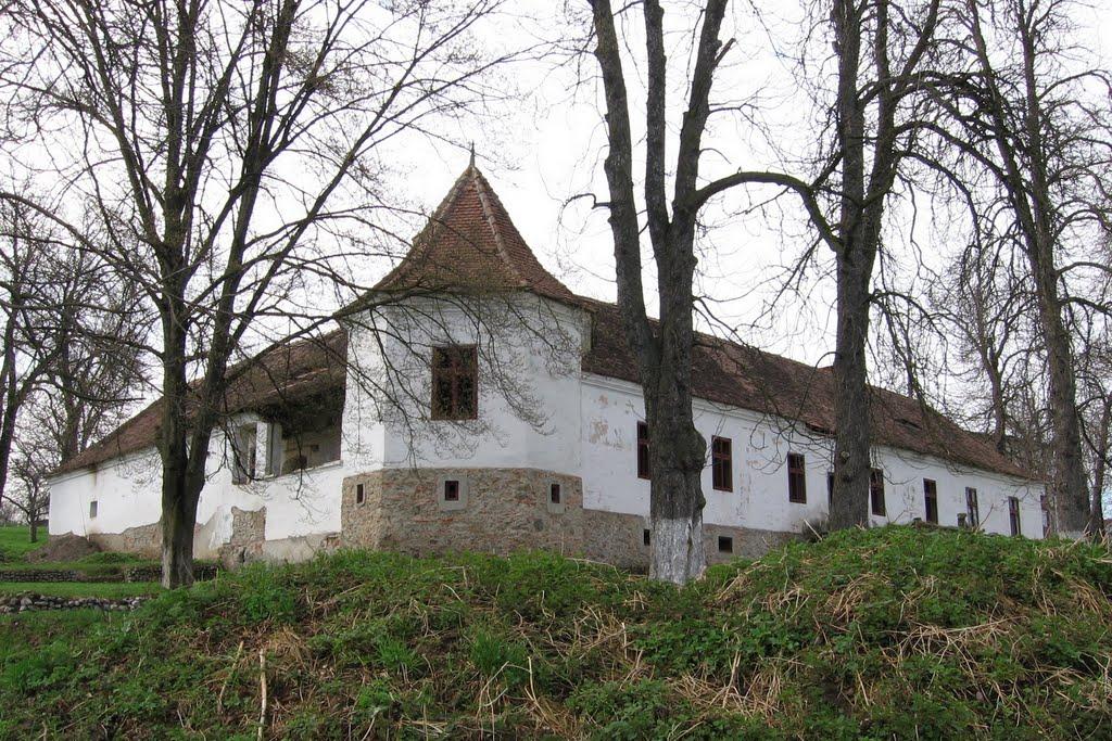 Castelul Guthman-Valenta din Hogiz (romanianresorts.ro)