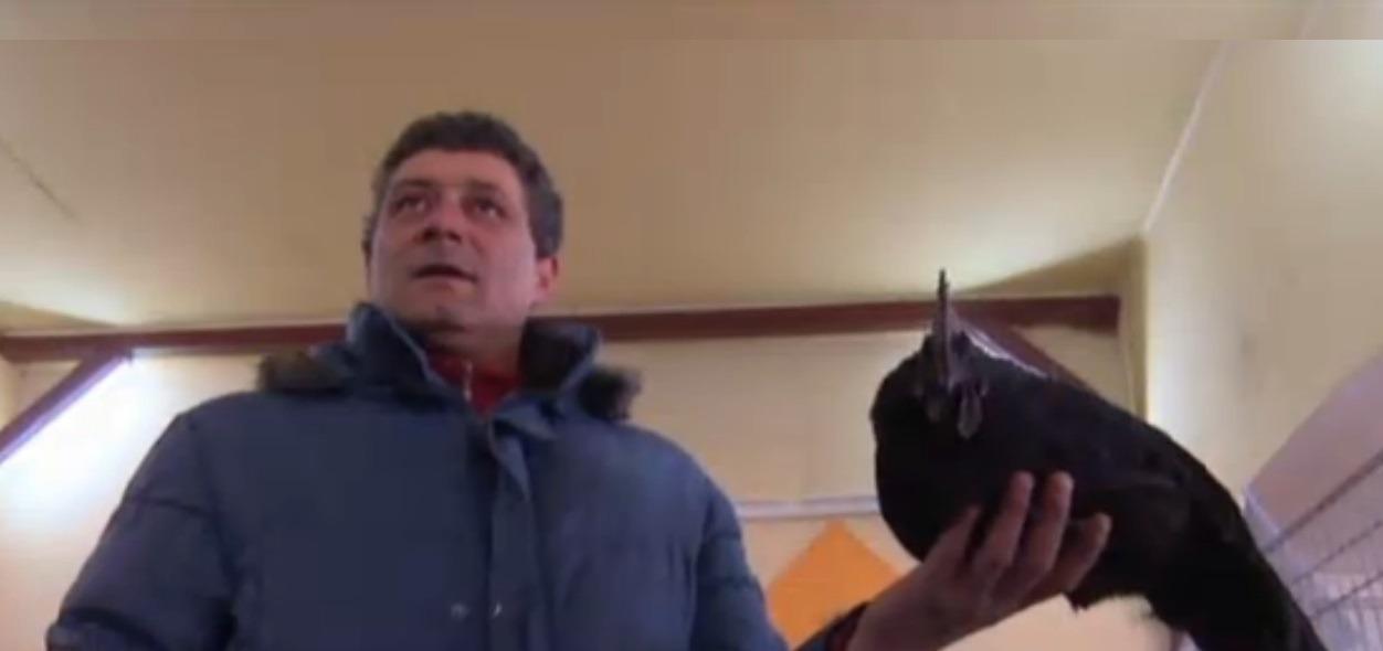 Domnul Nicolae și una din găinile sale negre (stirileprotv.ro)