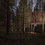 cele-mai-frumoase-case-din-copaci-16