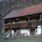 casa cu brad