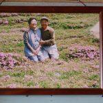 lectie-de-devotament-gradina-flori-japonia-05
