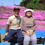 lectie-de-devotament-gradina-flori-japonia-07