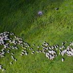 Cele mai frumoase fotografii surprinse de drone