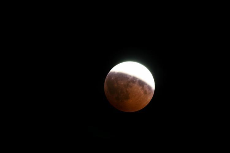 Eclipsa de Lună (Wikimedia Commons)