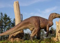 Iguanodonul era un ierbivor uriaș (Wikimedia Commos)