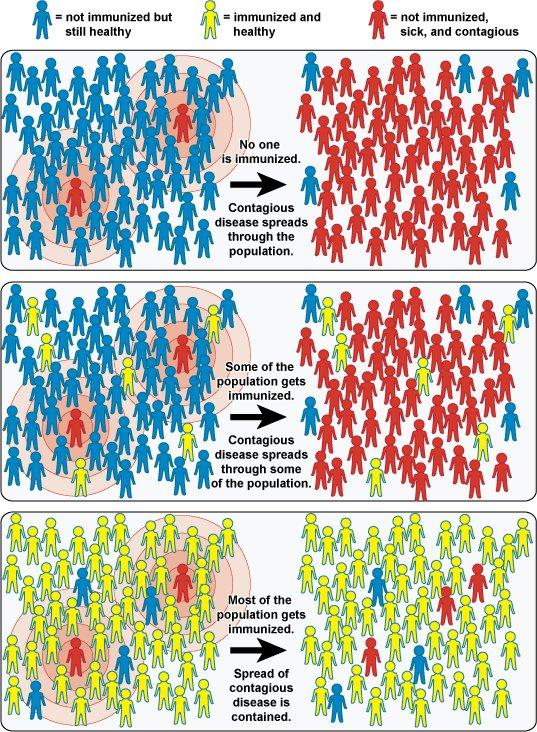 imunitatea de turmă vaccinuri