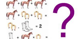 problemă cai potcoave
