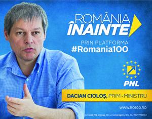 Elena Udrea - afiș electoral alegeri parlamentare 2016