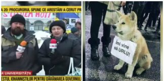 românia tv sancțiuni cna