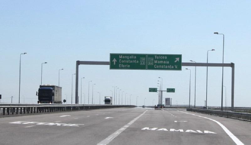 Drumul de coastă din Constanța a fost blocat de o pasăre cu gâtul creț (Foto: Ziua de Constanta)