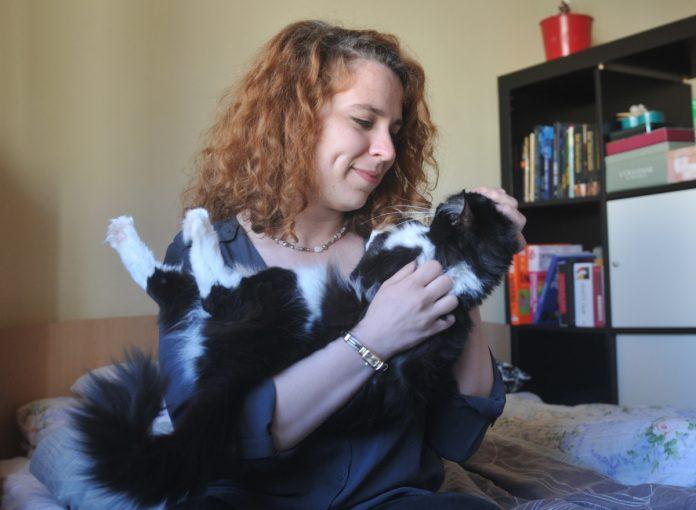 dădacă pentru pisici frau miau