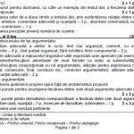 barem subiecte bacalaureat română 2017