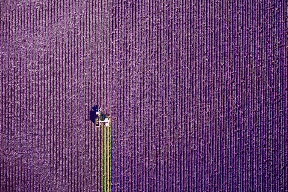 cele mai frumoase fotografii cu drone 2017