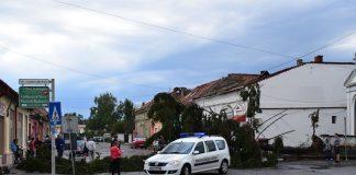 Imagini din Lugoj, după furtună. Foto: Facebook Radio Șanț