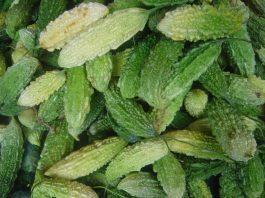 O plantație de castravete amar ar putea fi trecut pe lista cu idei de afaceri FOTO:David Monniaux/Wikimedia Commons