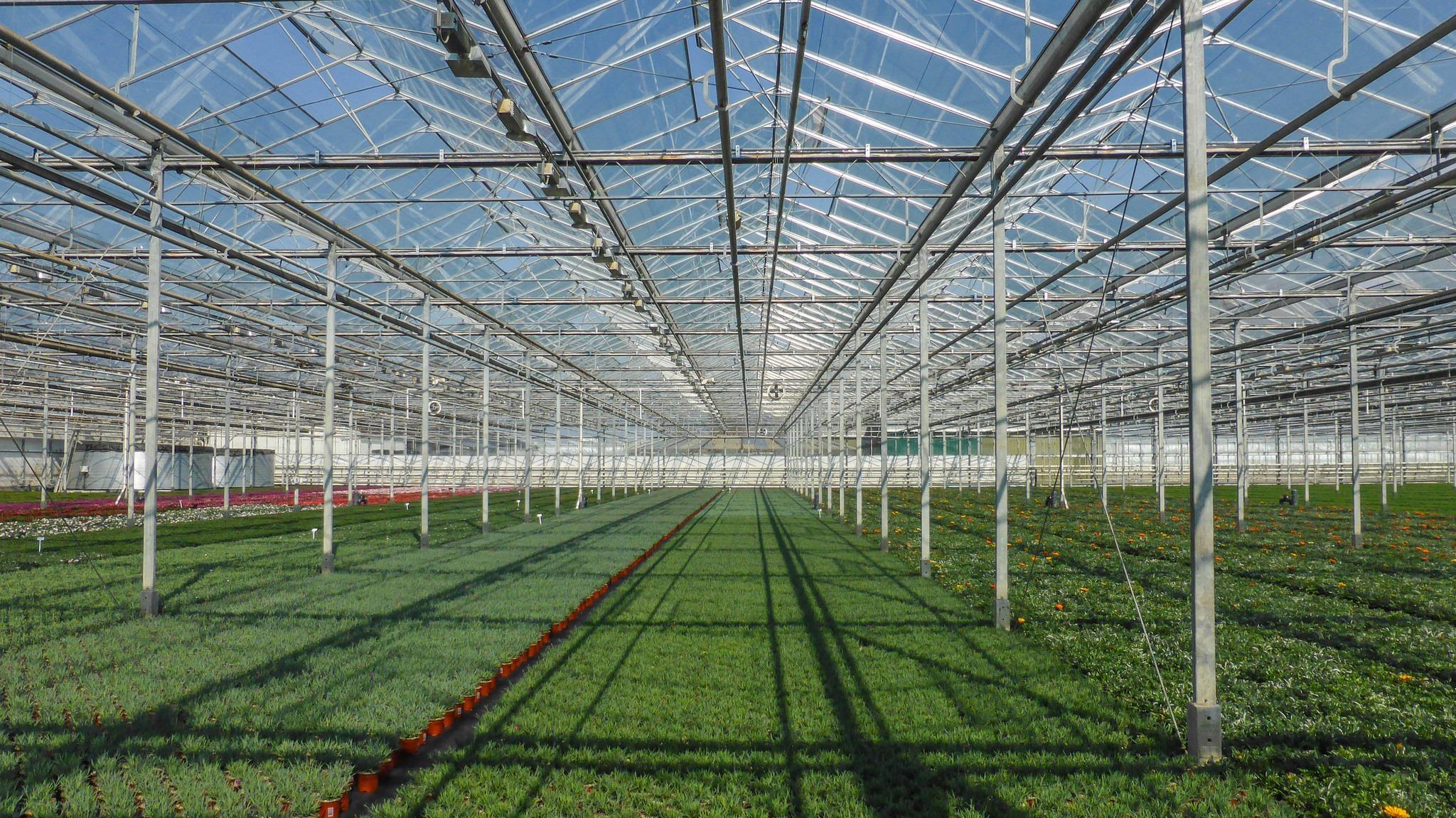 Agricultura de seră este costisitoare, dar și profitabilă. Foto: -JvL- / Flickr