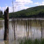 lacul cuejdel neamț