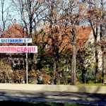Parcul Romniceanu se află foarte aproape de Cotroceni. Foto: Wikimedia Commons