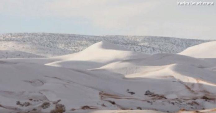 Zăpadă în Deșertul Sahara. Foto: Karim Bouchetata / Youtube