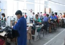 clujana insolvență fabrică