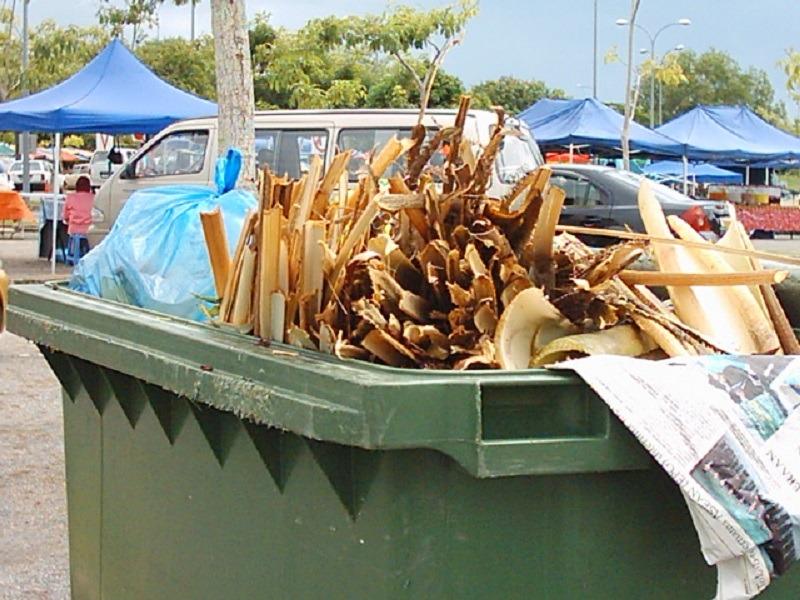 Deșeuri vegetale. Foto: BPheonix / Flickr