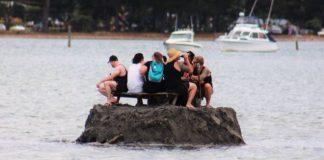insulă noua zeelandă