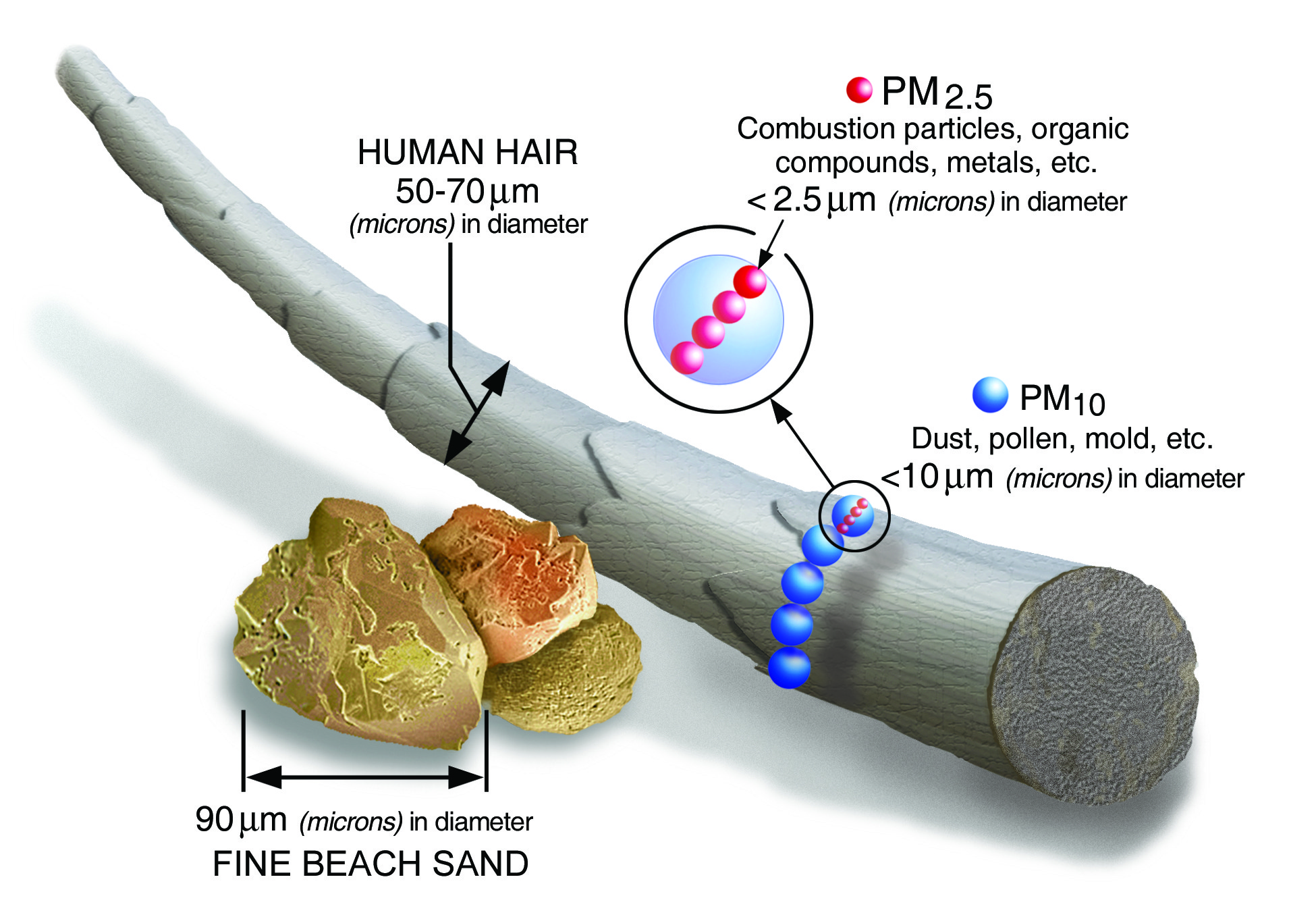 particule de materie PM-uri
