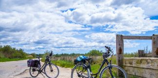 Timișorenii se vor putea plimba în siguranță cu bicicleta și în afara orașului. Foto: Pixabay