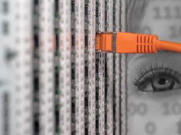 Compania Uitech, fondată în România, este un gigant IT în devenire. Foto: Pixabay