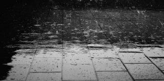 ploi torențiale vijelii