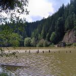 cele mai frumoase lacuri din romania lacul rosu