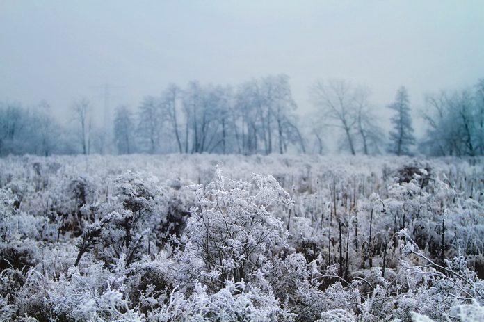 vine frigul brumă vreme rece meteo
