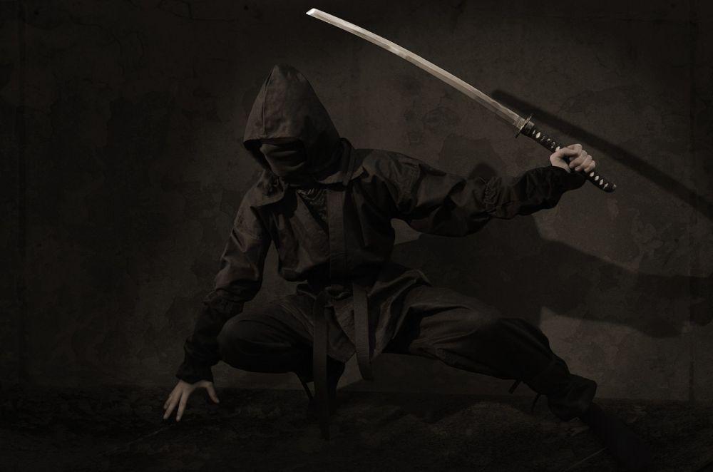 ninja sabie asasin