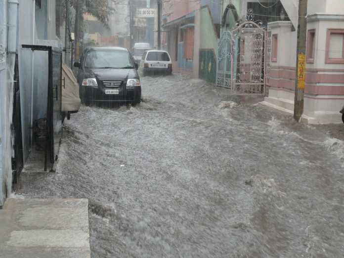 viituri inundații torenți