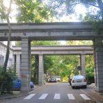 cartier de blocuri drumul taberei