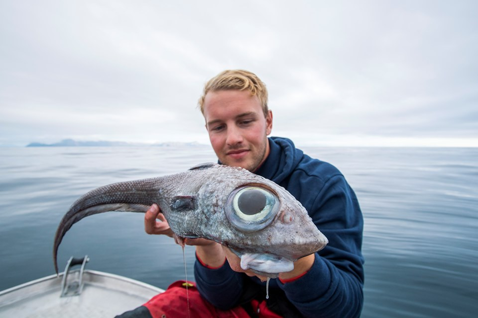 FOTO: Nordic Sea Angling/Facebook