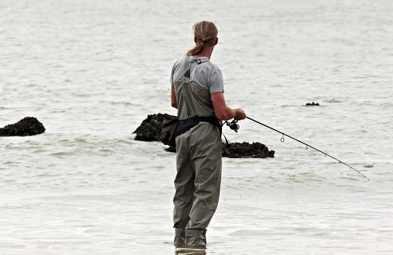 pescuit feeder