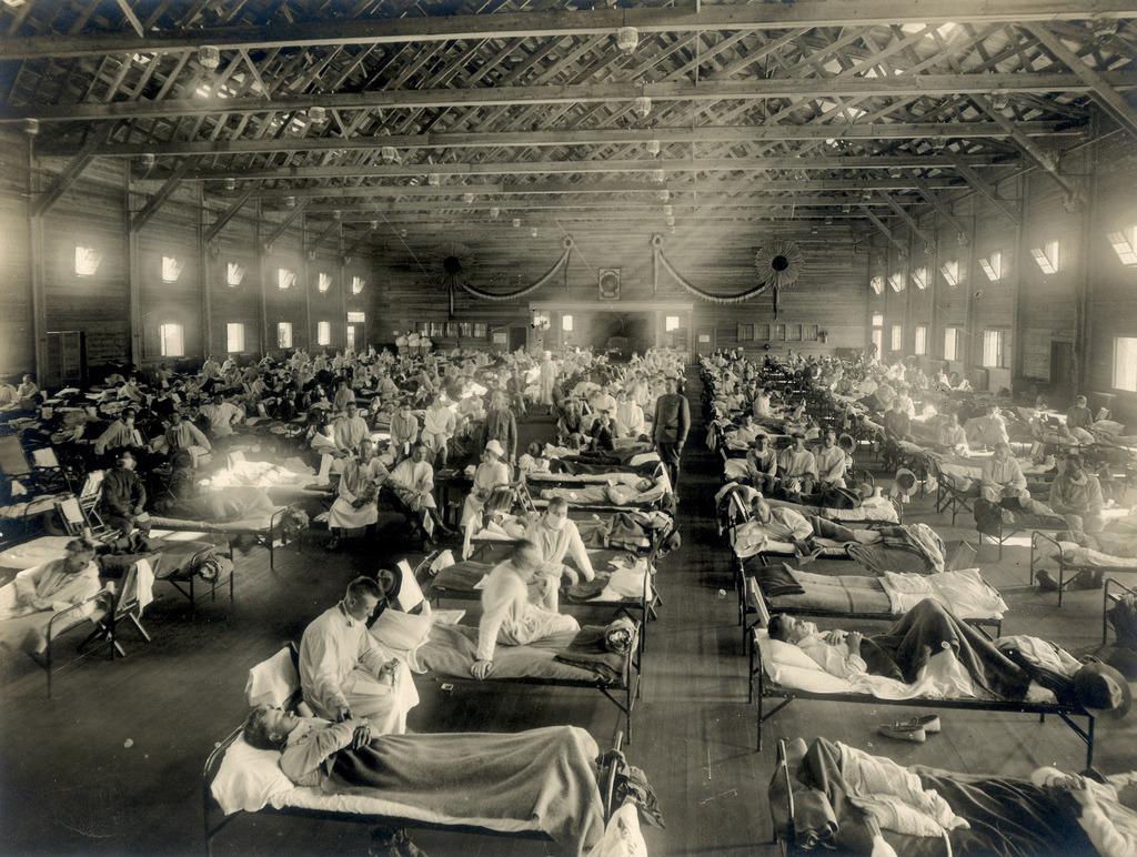 gripa spaniolă ce este pandemia