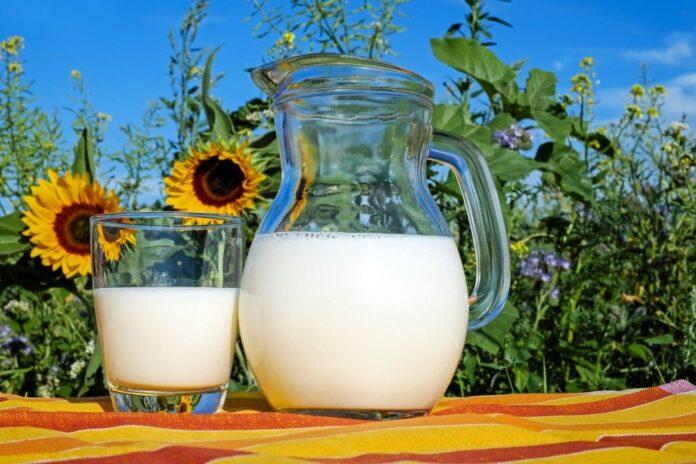 câte calorii are un pahar de lapte