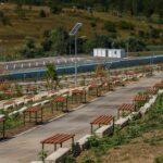 cimitir-parc-cluj-napoca-09