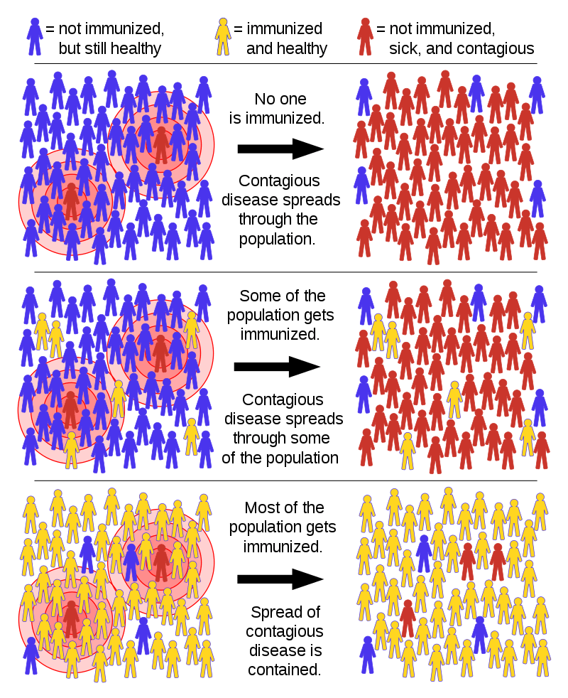 imunitatea de turmă