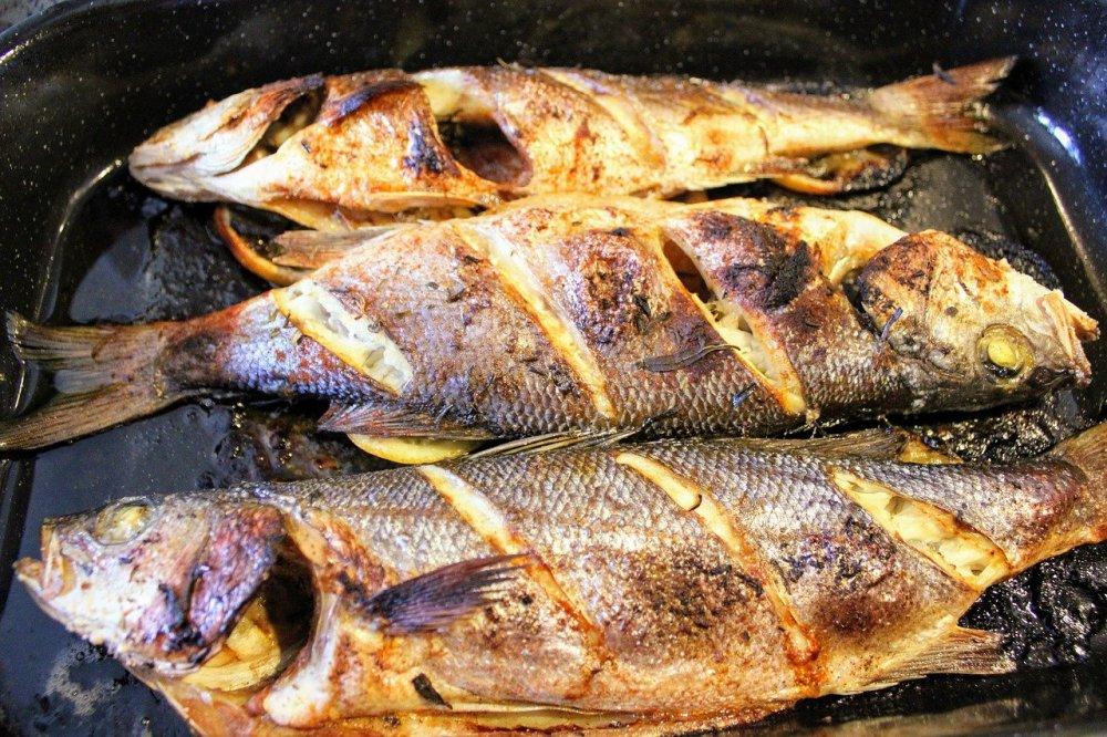 câte calorii are peștele biban de mare