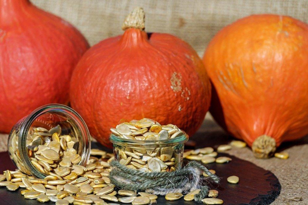 semințe de dovleac calorii