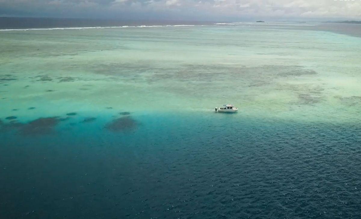 insula kale dispărută încălzirea globală